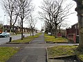 Fir Tree Avenue - geograph.org.uk - 1767594.jpg