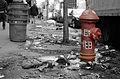Fire hydrant New York.jpg