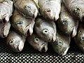 Fishmarket 03.jpg