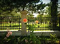 Five City Blocks, Smell Of Roses - panoramio.jpg