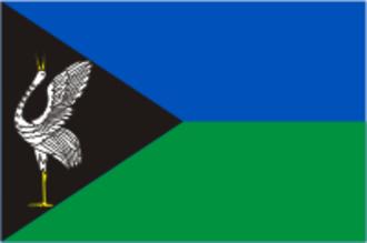 Borzya - Image: Flag of Borzya (Chita oblast)