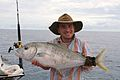 Flickr - Golden Trevalli.jpg