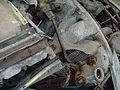 Flugmotor BMW 801 - Flickr - KlausNahr (1).jpg