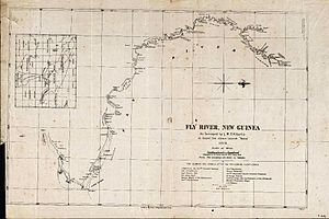 Fly River - The original survey map created by L.M. D'Albertis in 1876