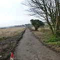 Footpath - panoramio (7).jpg