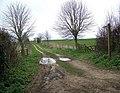 Footpath to Rockbourne - geograph.org.uk - 739570.jpg