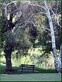 Ford Park, Upper Pond, Redlands, CA 7-12 (7699765742).jpg