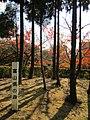Forest of Toyama, Okurayama Park 20131201115617.jpg