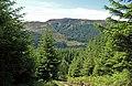 Forestry above Loch Chon - geograph.org.uk - 1360122.jpg