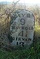 Forgotten Milestone - geograph.org.uk - 616070.jpg
