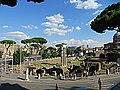 Foro di Cesare - panoramio (1).jpg