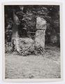 Foto slottet med tegelbruket - Hallwylska museet - 102242.tif