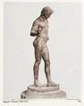 Fotografi av Narcissos. Neapel, Italien - Hallwylska museet - 106851.tif
