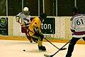 Four-Nation Hockey Tournament 5 (4397905598).jpg