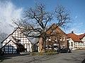Friedenseiche, 1, Lauenau, Landkreis Schaumburg.jpg