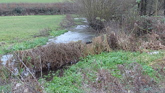 Frogmore Meadows - Frogmore Meadows and the River Chess