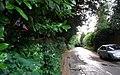 Fullers Wood Lane - Steep Hill 11^ - geograph.org.uk - 1429811.jpg