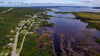 Gambo, Newfoundland and Labrador Town in Newfoundland and Labrador, Canada