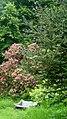 Garden bench at Glenalla - geograph.org.uk - 1950794.jpg