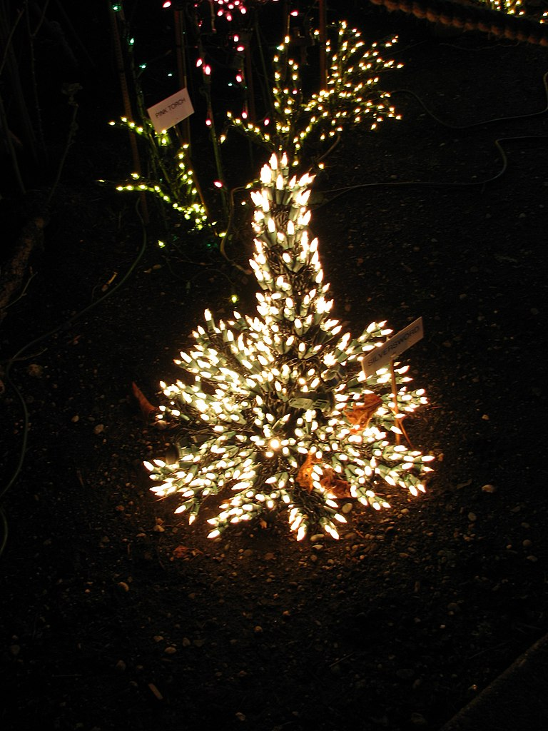File:Garden d\'Lights 2008 at the Bellevue Botanical Garden, img003 ...