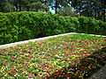 Garden in Fátima - Jul 2008.jpg