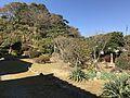 Garden of Former Residence of Nabeshima Family in Kojirokuji Area 5.jpg