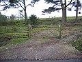 Gate - geograph.org.uk - 409734.jpg