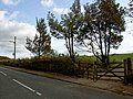 Gate and bus stop Wilshaw Road - geograph.org.uk - 1516286.jpg