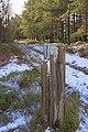 Gatepost, Rievaulx Moor - geograph.org.uk - 1700538.jpg