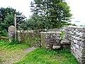 Gates and stile - geograph.org.uk - 1158847.jpg