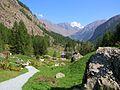 Giardino Botanico Alpino Paradisia abc24.JPG