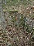 Gl. Rye flyveplads (16866107328).jpg