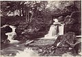 Glen Lun. The Rustic Bridge MET DP112687.jpg