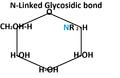 Glycosidic.png
