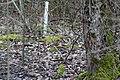 Gog-le-hi-te-wetlands 02-17 18.jpg