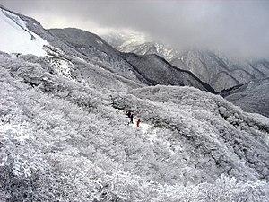 Suzuka Quasi-National Park - Mount Gozaisho