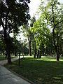 Gradski Park-Skopje (133).JPG