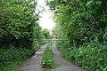 Grassy track off St Marnarch's Road, Lanreath - geograph.org.uk - 434248.jpg
