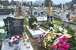 Graves of Findysz family at Central Cemetery in Sanok 1.jpg