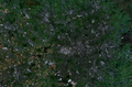 Greater Manchester Satelite View.png