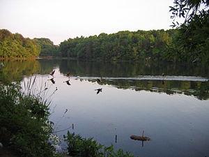 Albert S. Buddy Attick Lake Park