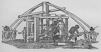 Agriculture in Brazil - Sugar attracted the colonizer who brought slaves from Africa, and it led to invasion of the territory. The picture depicts a Dutch sugar mill in the work Historia Naturalis Brasiliae, 1648.