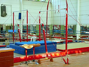 Glossary of gymnastics terms - Various gymnastics apparatuses. Apparatuses shown include the horizontal (high) bar, the uneven bars, and still rings.