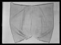 Handhästtäcke, troligen använt vid ambassadören Nils Bielkes intåg i Paris 1679 - Livrustkammaren - 61889.tif