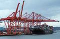 Hanjin Oslo (ship, 1998) 004.jpg