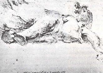 Hansken - Stefano della Bella's drawing of Hansken after her death (1655).
