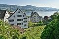 Haus zum Schlossberg - Curti-Haus - Schlossberg - Lindenhof Rappersil 2015-05-27 18-34-25.JPG