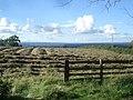 Hay field at Bulthy - geograph.org.uk - 541386.jpg
