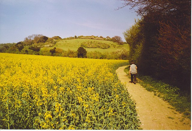 Heading Up Hollingbourne Down. - geograph.org.uk - 170954