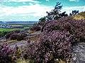 Helsby - panoramio.jpg